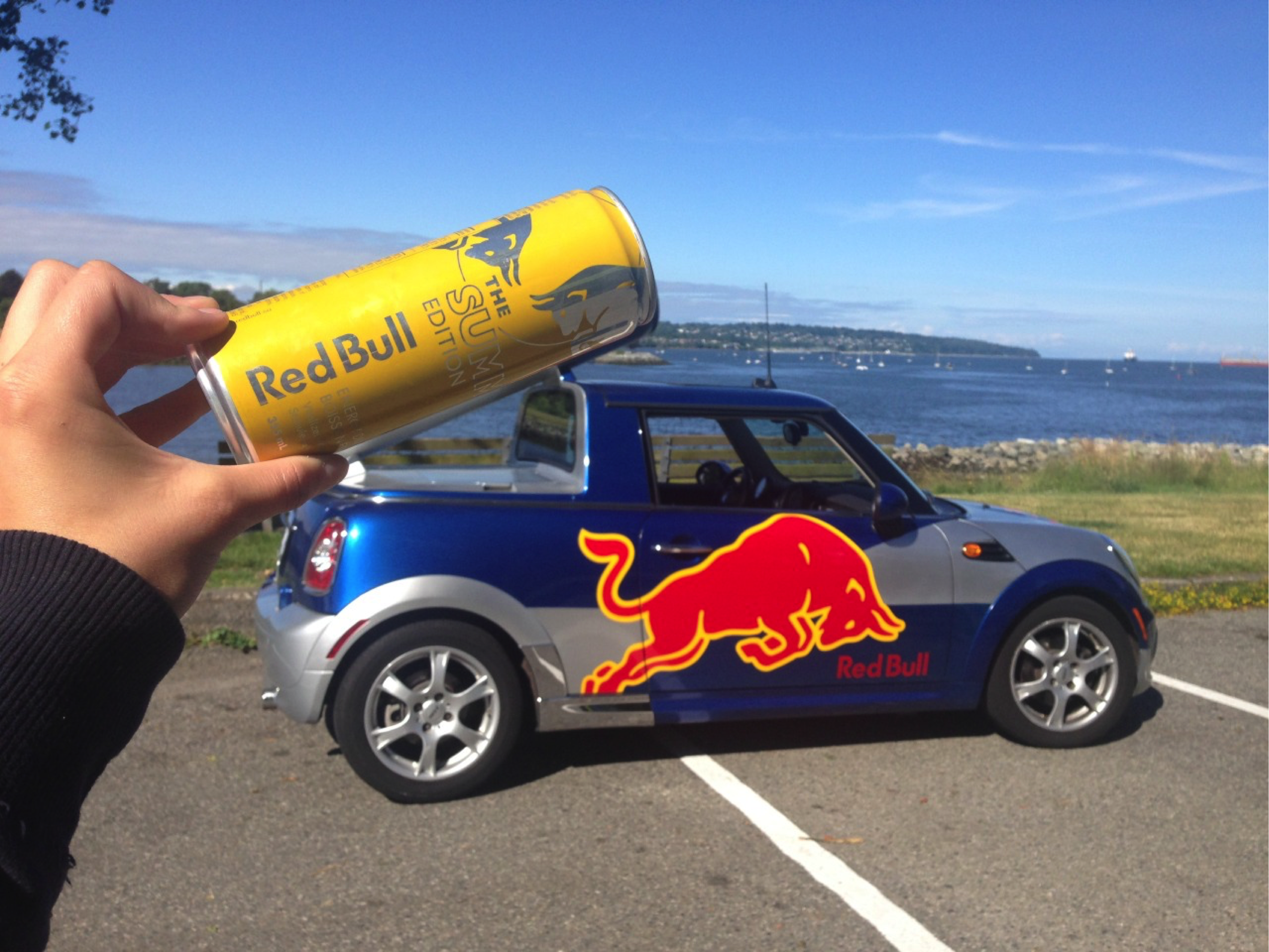 red bull sampling strategy