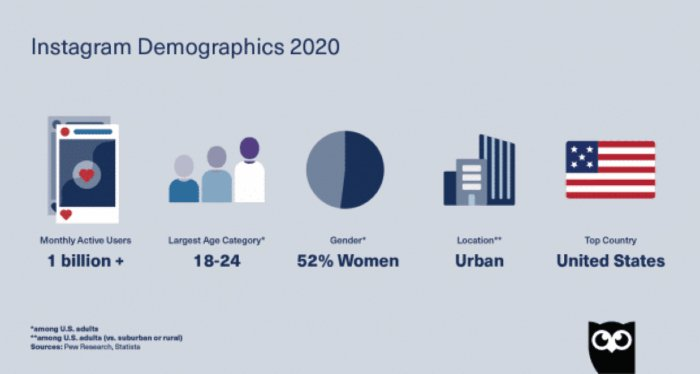 Instagram demographics chart by Hootsuite