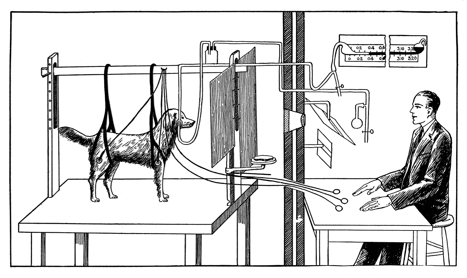 Pavlov_experiments_with_dog_Wellcome_M0014738.jpg