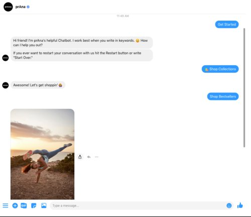 prAna chatbot